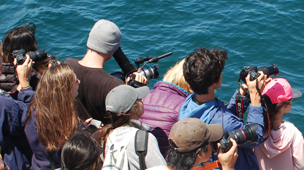 Blue Horizons Film Premier